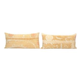 Suzani Lumbar Pillow Cover - a Pair For Sale
