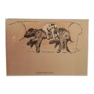 Framed Dog Prints by Cecil Aldin X10 For Sale