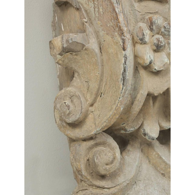 Antique Italian Carved Decorative Architectural Element For Sale - Image 9 of 10