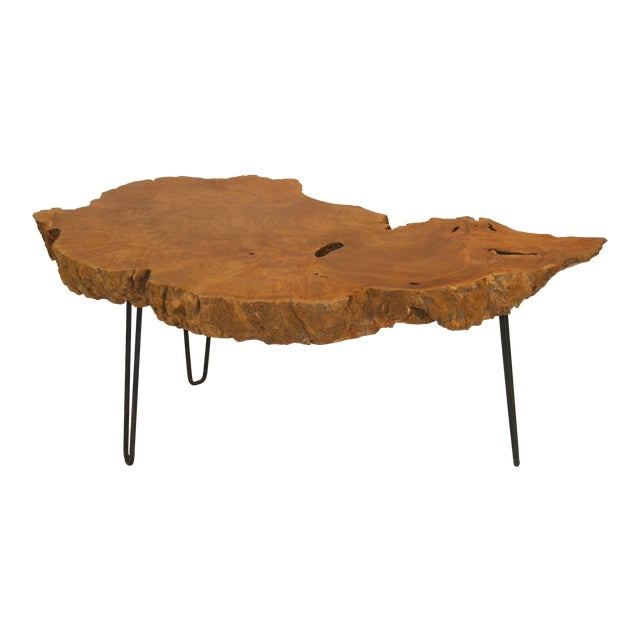 1960s Mid-Century Modern Live Edge Burl Root Table on Steel Hairpin Legs For Sale