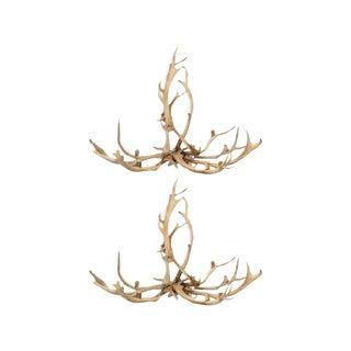 Red Deer Antler Chandeliers - A Pair