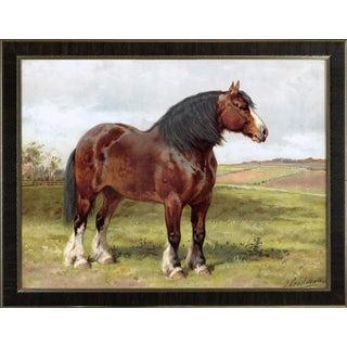 Shire Horse by Eerelman Framed in Italian Wood Vener Moulding For Sale