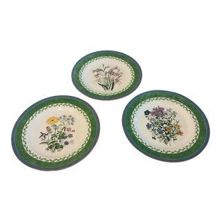 Smithsonian International Botanical Salad Plates - Set of 3 For Sale
