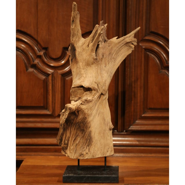 Large Antique Driftwood Sculpture on Green Marble Base For Sale - Image 4 of 8