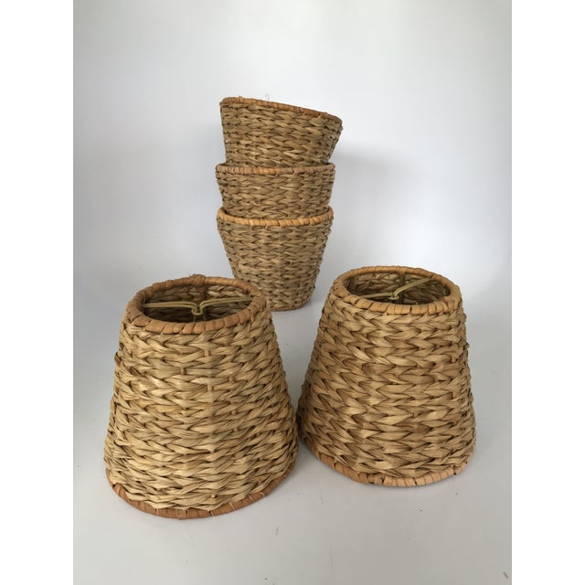 Wicker rattan seagrass mini chandelier lamp shades set of 5 chairish wicker rattan seagrass mini chandelier lamp shades set of 5 image 4 of 12 aloadofball Choice Image