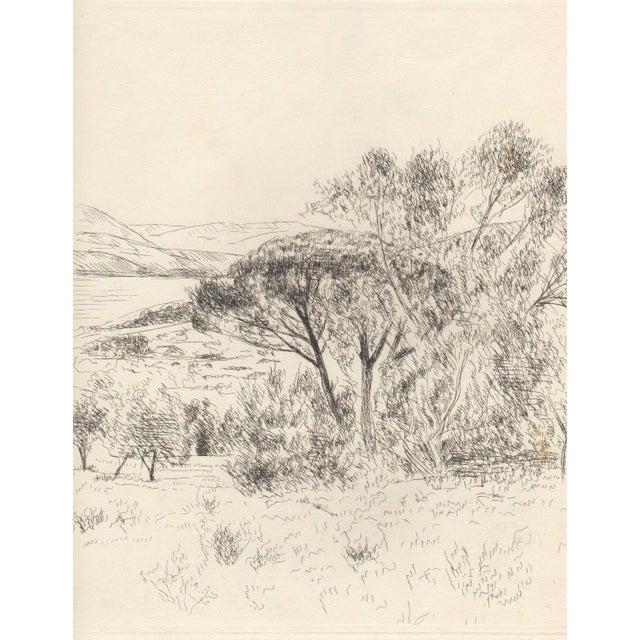 Andre Dunoyer de Segonzac Etching c.1930's - Image 1 of 3