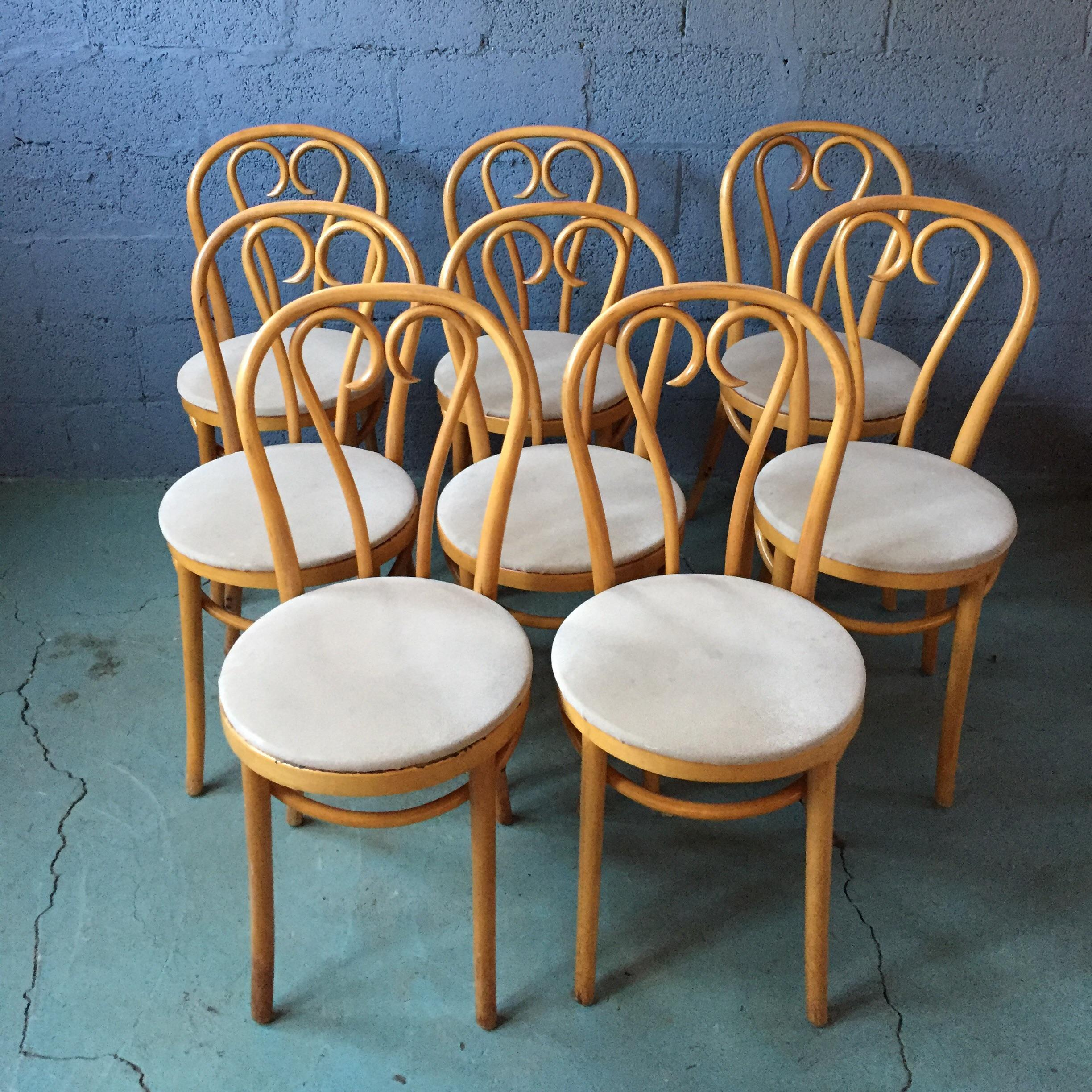 Traditional Pine Dining Table u0026 Bentwood Chairs - Set of 9 - Image 5 of 11 & Traditional Pine Dining Table u0026 Bentwood Chairs - Set of 9   Chairish