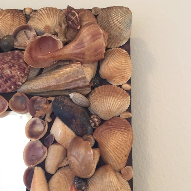Contemporary Vintage Shell Mirror For Sale - Image 3 of 4