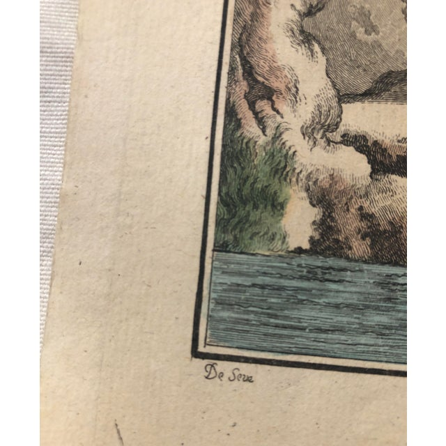 18th Century French Bird Engraving Signed by Jacques De Sève Featuring an Eurasian Coot For Sale In Atlanta - Image 6 of 13