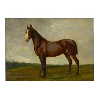 John Lewis Shonborn (American, 1852-1931) Equestrian Oil Painting of Thoroughbred For Sale