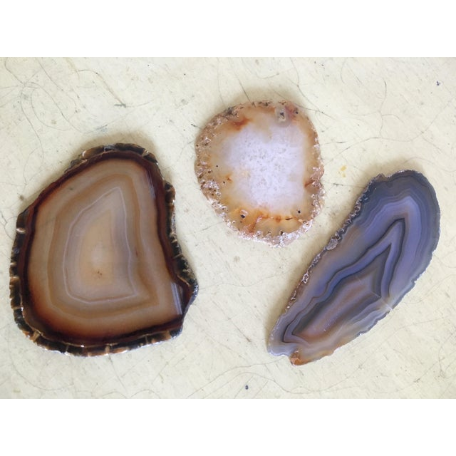 Earth Tones Crystal Druzy Geodes - Set of 3 Agate Slices - Image 3 of 8
