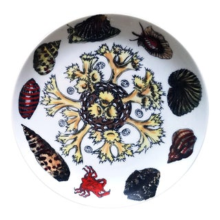Vintage Piero Fornasetti Conchiglie Pattern Plate decorated with Sea Anemones, Urchins & Shells, Circa 1960-70's
