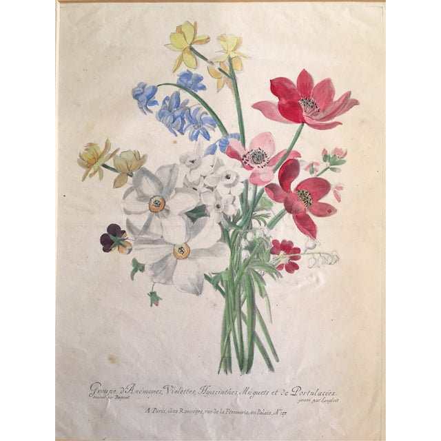 French Antique French Floral Botanical Print For Sale - Image 3 of 6