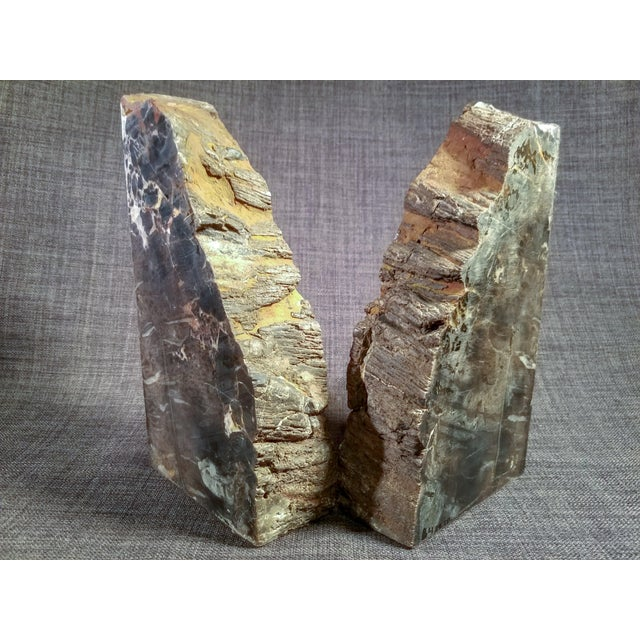 Petrified Wood Bookends - A Pair - Image 5 of 7