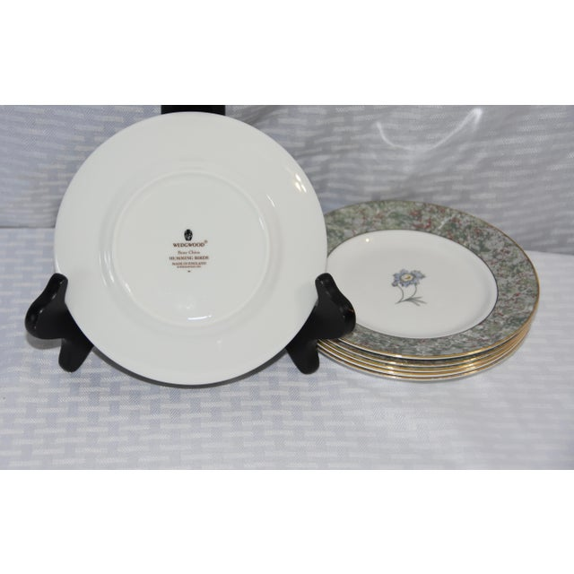 1990s 1990 Humming Birds by Wedgwood Bread & Butter Plates - Set of 6 For Sale - Image 5 of 6