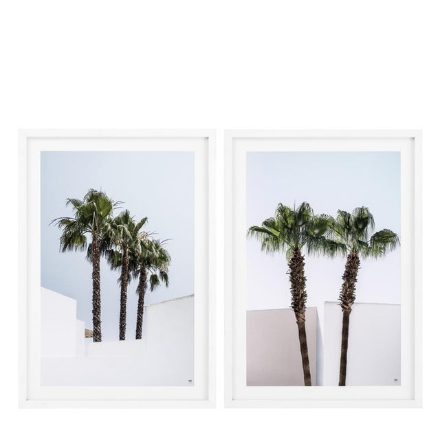 Palm Trees Palms Print (Set of 2) For Sale - Image 4 of 4