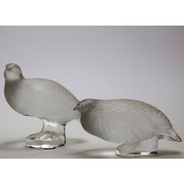 "A Fine Pair of Lalique Partridges Perfect for a holiday table or everyday decor. Clear and Frosted glass 6"" Deep x 3.75""..."