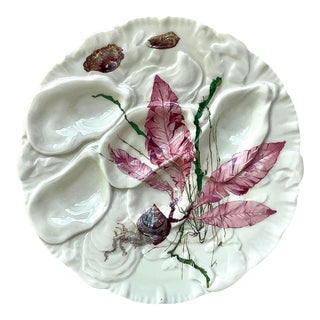 French Porcelain Sealife Haviland Limoges Oyster Plate For Sale