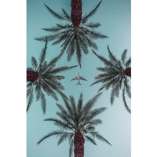"""""""Palm Springs Plane & Palm Trees """" Contemporary Photograph by Jason Mageau For Sale"""
