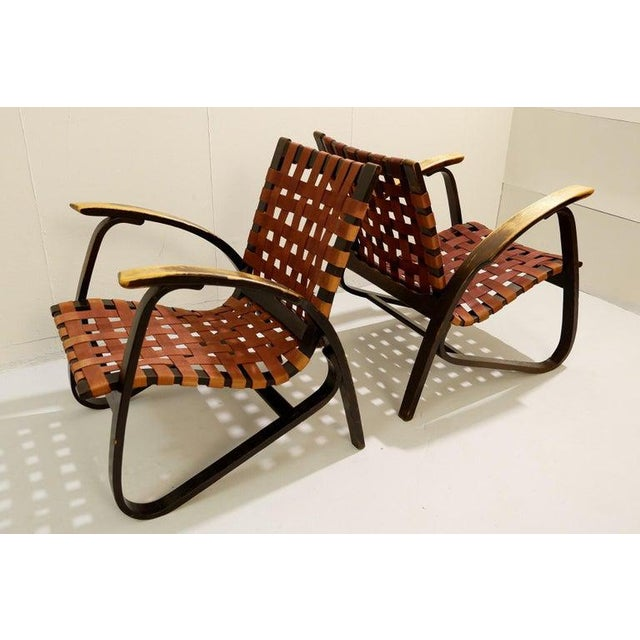 Pair of Bentwood Armchairs by Jan Vanek for Up Závody, 1930s For Sale - Image 6 of 8