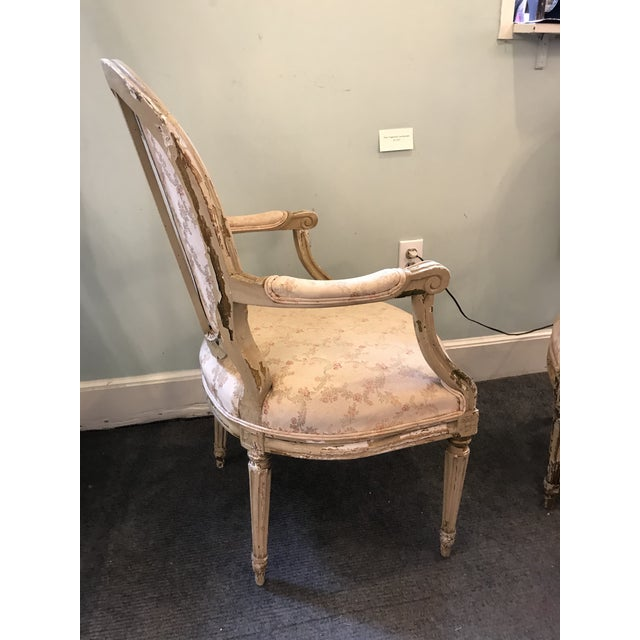 1920s Early 20th Century French Louis XV Style Chairs - a Pair For Sale - Image 5 of 8