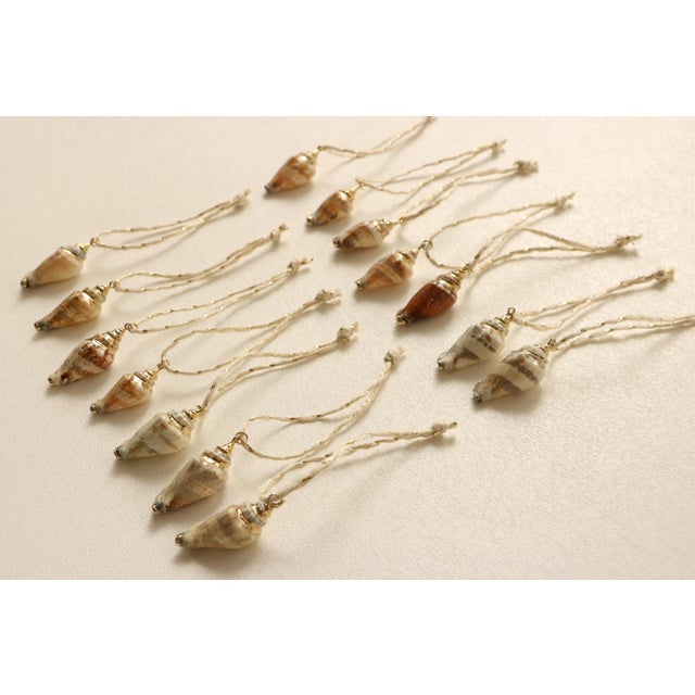 Gold Plated Conch Shell Christmas Ornaments - S/14 - Image 4 of 5