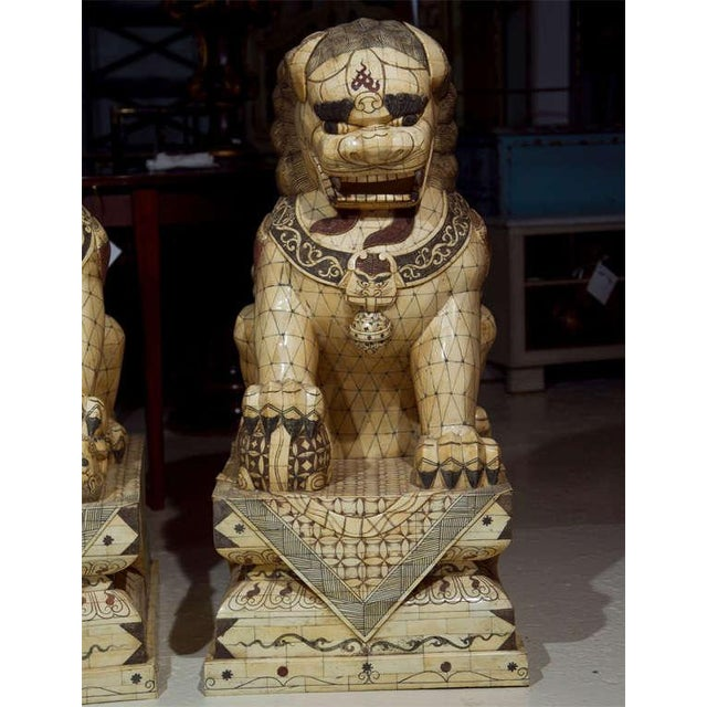 Asian Pair of Palace Sized Bone Foo Dogs Sculptures For Sale - Image 3 of 11