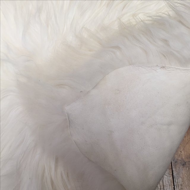 Icelandic Sheepskin Throw - 2′8″ × 4′4″ - Image 4 of 4
