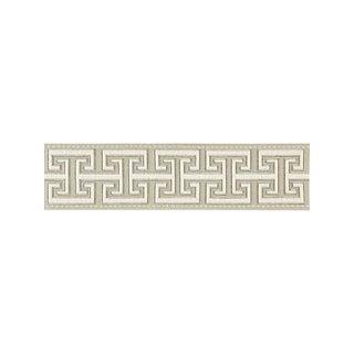 Scalamandre Luxor Velvet Tape, Flax Fabric For Sale