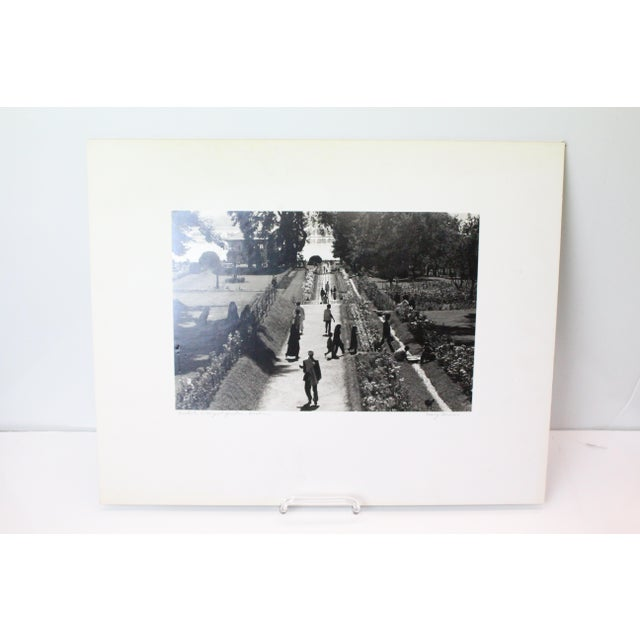 Kashmir mughal garden photograph by Mary Forman in black and white and in white mat.