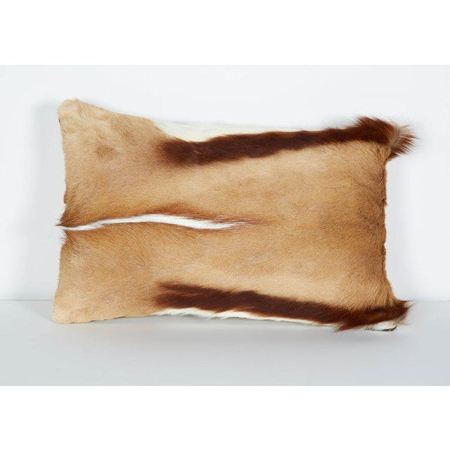 2010s Pair of Luxury Fur Throw Pillows in Exotic African Springbok For Sale - Image 5 of 8