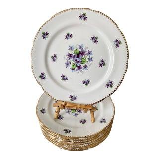 Royal Stafford Sweet Violets Gold Edge Salad Plates - Set of 10 For Sale