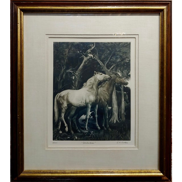 G.H. Rothe - pair of Horses in Love - beautiful Color Mezzotint -Pencil Signed mezzotint on paper -Signed and number frame...