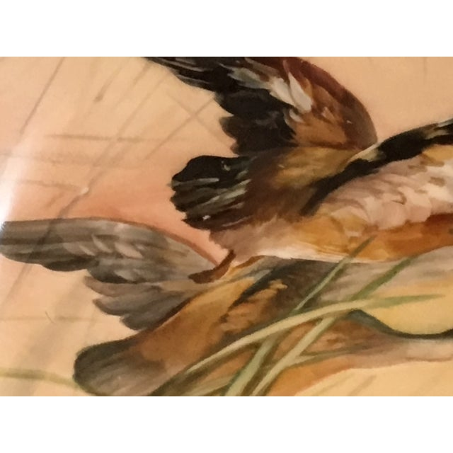 Antique French Porcelain Game Bird Hand Painted Plate, Signed For Sale - Image 4 of 13