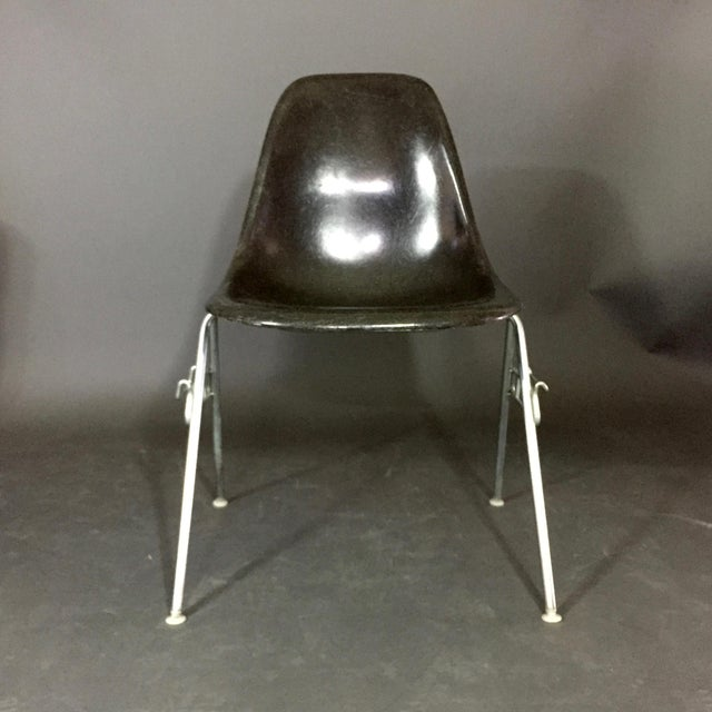 Charles and Ray Eames Six (6) Charles and Ray Eames Fiberglass Shell Chairs, Stacking Base For Sale - Image 4 of 10