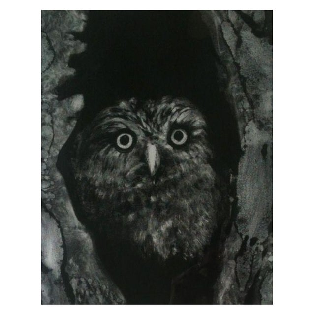 Night Owl by Sylvia Roth - Image 1 of 2
