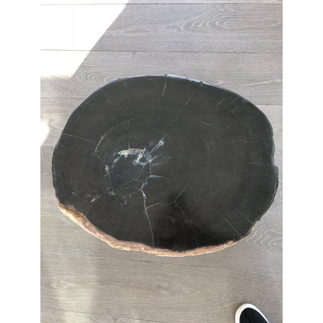 Restoration Hardware Restoration Hardware Petrified Fossilized Wood Coffee Table Stool For Sale - Image 4 of 7