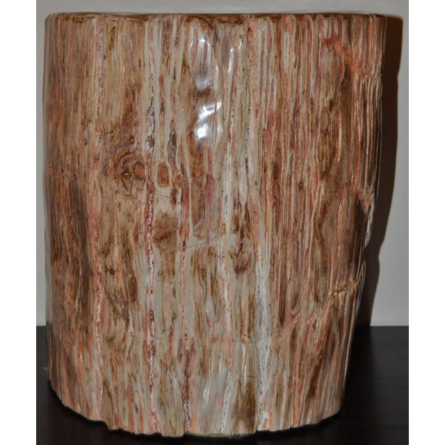 Ancient Petrified Wood Side Table For Sale In San Francisco - Image 6 of 7