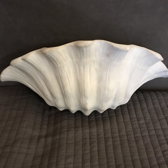 1930's Frances Elkins Shell Form Plaster Wall Scones - a Pair For Sale - Image 6 of 8