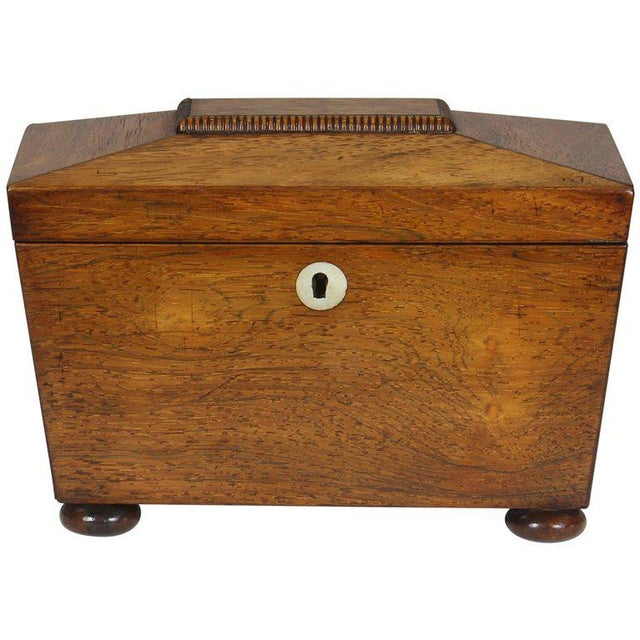 Regency Mahogany Sarcophagus Form Tea Caddie For Sale - Image 11 of 11