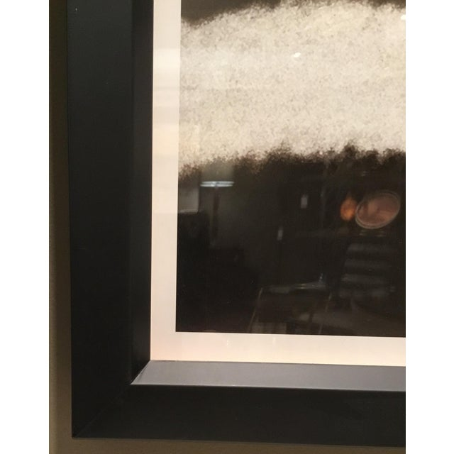 "2010s Trowbridge ""Zebra"" Photo Triptych by Jamie Thorn Set of 3 For Sale - Image 5 of 7"