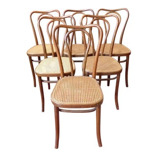 Vintage Bentwood and Cane Cafe Dining Chairs - Set of 6 For Sale