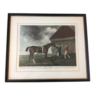 """Eclipse"" Horse Framed Print by George Stubbs For Sale"