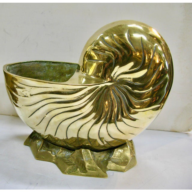 Gold Vintage Huge Brass Nautilus Seashell Planters - a Pair For Sale - Image 8 of 14