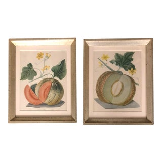 A Pair Vintage Lithographs of Melons Framed For Sale