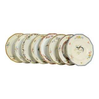 Vintage Mixed Bird Dinner Plates - Set of 8 For Sale