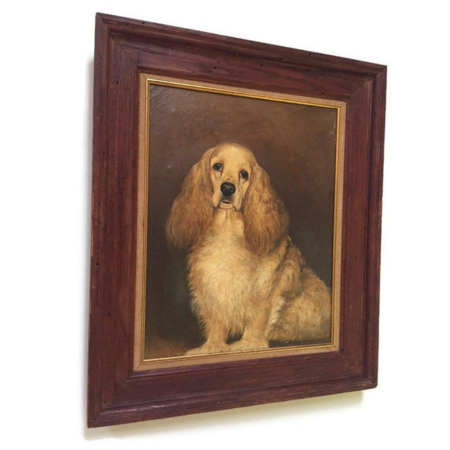Portraiture Vintage Mid-Century Cocker Spaniel Portrait Oil Painting For Sale - Image 3 of 13