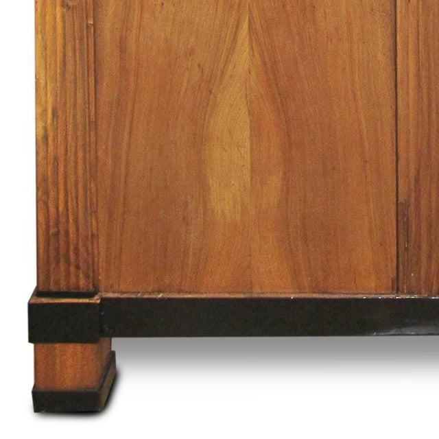 Mid 19th Century Period Biedermeier Cherry and Ebonized Armoire For Sale - Image 5 of 6