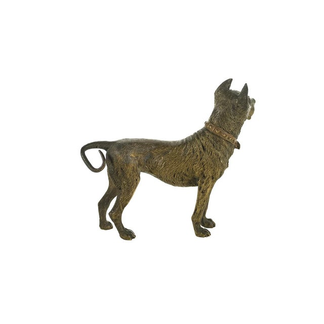 Original Bronze Pit Bull Sculpture For Sale - Image 7 of 9