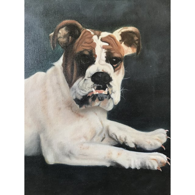 "Portraiture 2000s Portraiture Framed Oil Painting, ""Bulldog Portrait"" For Sale - Image 3 of 7"
